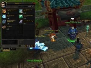 wow warcraft pet battle celestialtournamentrewards