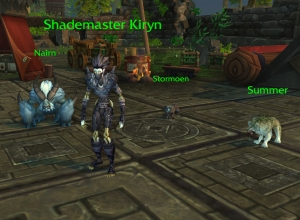 kiryn wow warcraft pet battle