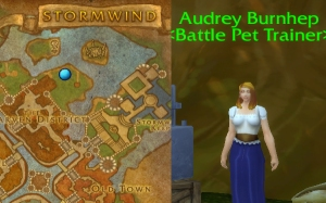 alliance trainer audrey burnhep wow world of warcraft pet battle