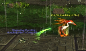 chichi wow world of warcraft pet battles