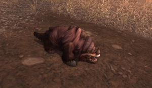 clefthoof runt wow world of warcraft pet battle