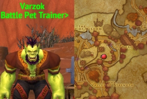 horde trainer varzok wow world of warcraft pet battle