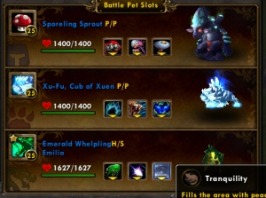pvp team wow world of warcraft pet battle
