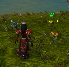 wild squirrel wow world of warcraft pet battle