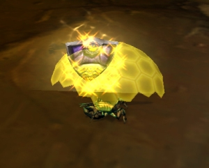 shell shield wow world of warcraft pet battle