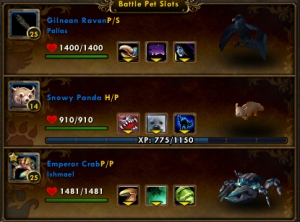 shu team wow world of warcraft pet battle