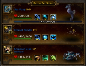 nishi team wow world of warcraft pet battle