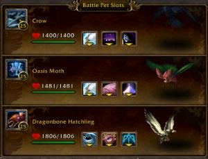 gorefu team to beat wow warcraft menagerie