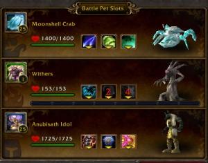 ashlei team warcraft warlords of draenor