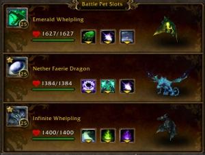 beakinatorteam wow warcraft pet battle draenor