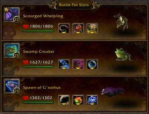 tirs fiero team wow warcraft pet battle draenor